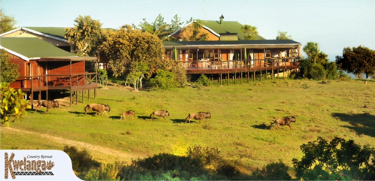Kwelanga Lodge